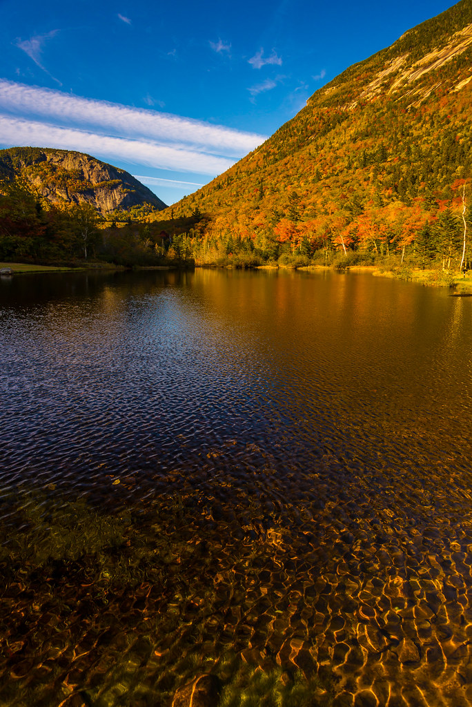 Hotels Near White Mountain National Forest