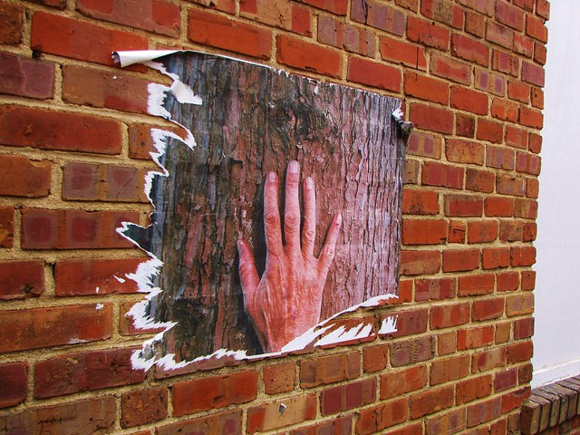 Hand on a Tree on a Wall in an Alley (2)