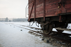 A train to Auschwitz