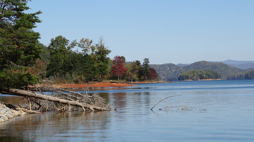 chfstew tennessee tncartercounty landscape lake