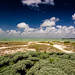 The Road to Punta Allen by Riccardo Maria Mantero