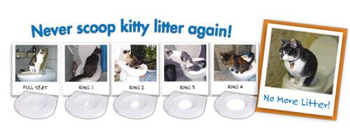 Dạy mèo đi vệ sinh đúng chỗ