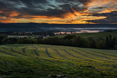 morning autumn trees orange mist green grass lines norway misty fog clouds sunrise countryside frost farm foggy meadow farmland farms depth buskerud d810 heistadmoen hedenstad nikonafsnikkor2470mmf28ged