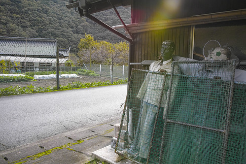 JZ J1 02 009 広島県山県郡安芸太田町 / SIGMA DP1 Marrill × SIGMA LENS 19mm F2.8