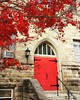 Beautiful red tree and door! #endofffallcolor #fallbeauty #sharonpa