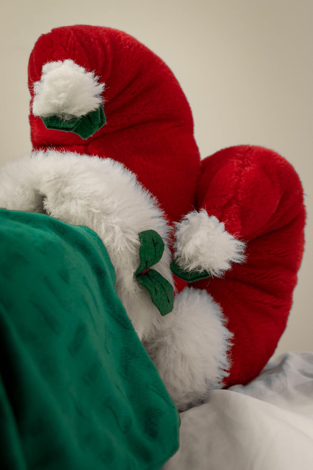 (s)elfie