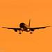 Sunset 05 Arrivals - JQ by Tom Marschall