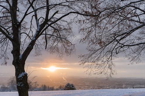 basel riehen schweiz inzlingen sony alpha 99 minolta 1735 landscape sunset sonnenuntergang landschaft natur lörrach badenwürttemberg deutschland