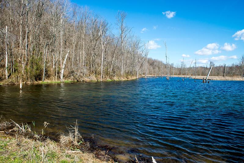 Hoosier National Forest - Otter Creek - March 10, 2017