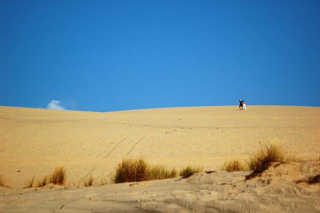 Les aventuriers de la dune perdue