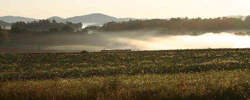 morning fog virginia 2006 va blueridgemountains mountian carrollcountyva