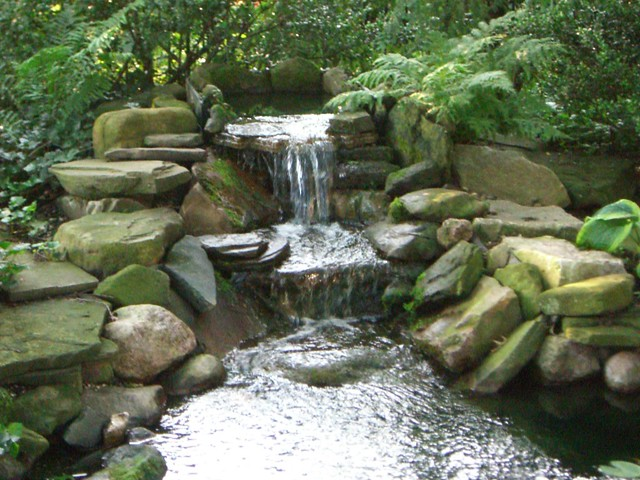 Koi pond waterfall flickr photo sharing Waterfall for ponds