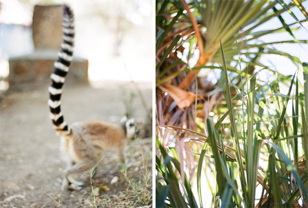 RYALE_Madagascar_Blog2_048