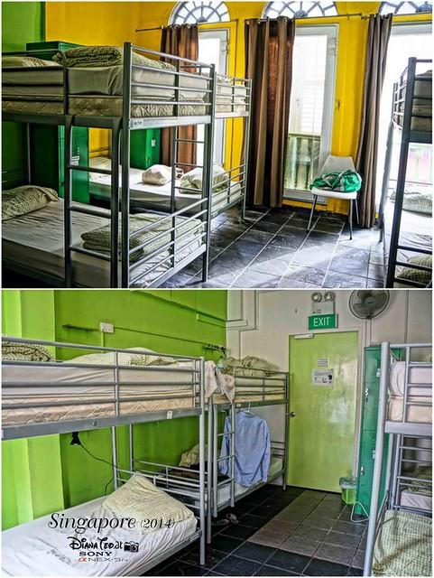 A Beary Good Hostel 07