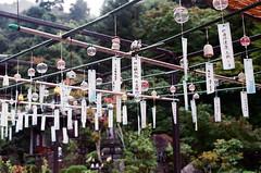風鈴 大聖院 嚴島(Itsuku-shima)広島 Hiroshima