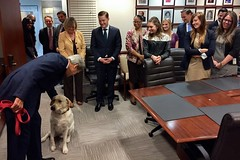 U.S. Secretary of State John Kerry pets his dog, Ben, 'The DiploMutt,' while thanking U.S. Chief of Protocol Ambassador Pete Selfridge and his staff for their recent work with State visits and United Nations General Assembly meetings during a visit to the State Department Protocol Office in Washington, D.C., on October 7, 2015. [State Department photo/ Public Domain]