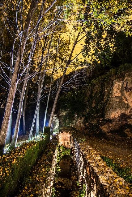 El bosque donde llueven piedras