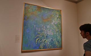 Chicago - Art Institute of Chicago Monet Irises