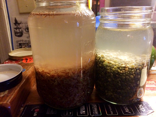 Soaking Rice and Lentils (December 10 2014)