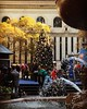 @bryantparknyc getting ready for the Dec1 #treelighting -- our #christmastree is all decked out.. #HappyThanksgiving, #NYC .. #nypl #manhattan #midtown #newyork #ny #christmas2015