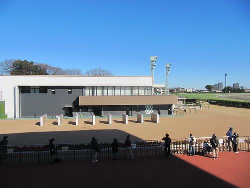 中山競馬場のグランプリロードを見下ろす