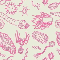 pathogens and parasites tile pink on grey