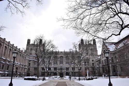 Harper Memorial Library in the snow