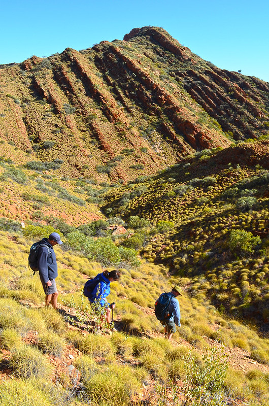 Geology - Larapinta Trail
