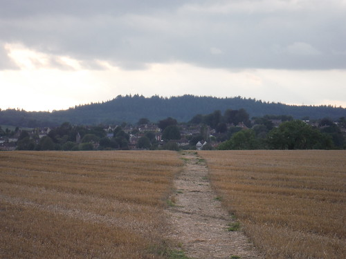 Tisbury and Beacon Hill, from near end of walk