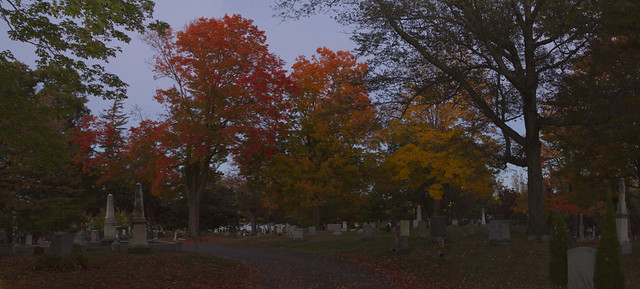 Foliage at Lakeside Cemetery; Wakefield, MA (2015)