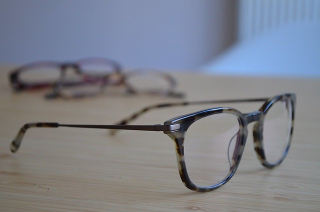 ace & tate AW15 glasses constructional elements metal temples on Dylan in autumn leaves
