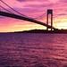 stellar sunset by jodi*mckee