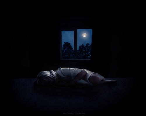 Restful solitude // 29 11 15