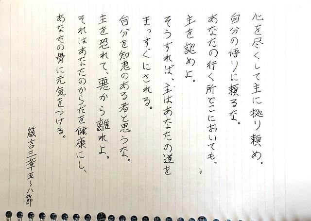 箴言3章5〜8節