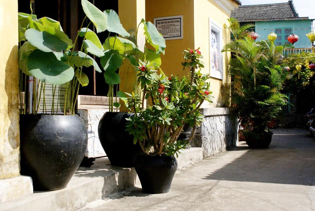 Au détour d'une ruelle de Hoi An, l'élégante rencontre de la couleur, des formes et des plantes.