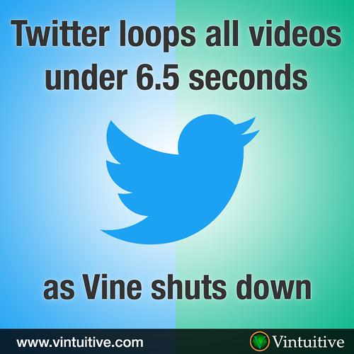 Twitter Loops All Short Videos