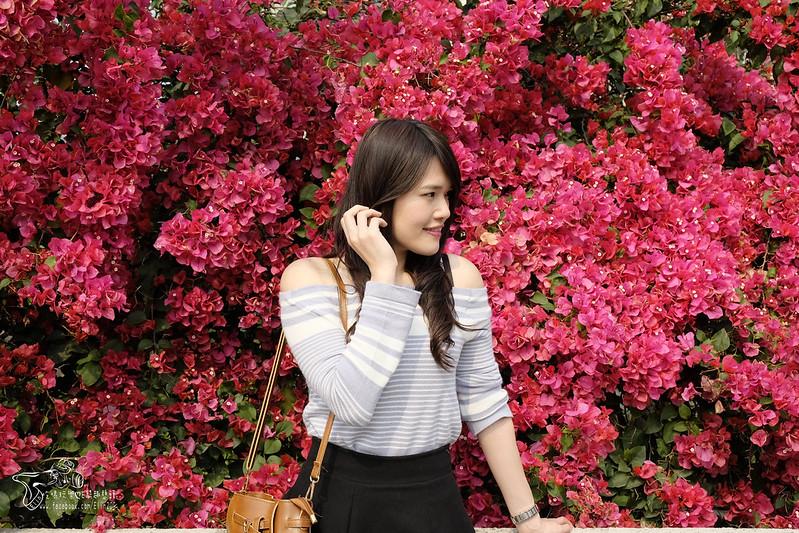 泰安大雅 (20)