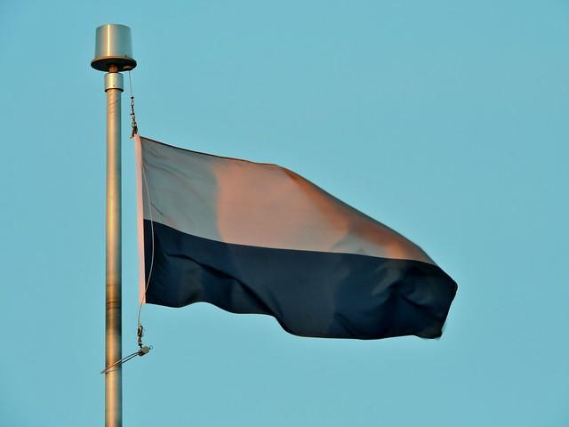 33 Signal Regiment flag