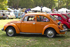 volkswagen new beetle(0.0), automobile(1.0), volkswagen beetle(1.0), wheel(1.0), volkswagen(1.0), vehicle(1.0), automotive design(1.0), subcompact car(1.0), city car(1.0), antique car(1.0), land vehicle(1.0), motor vehicle(1.0),