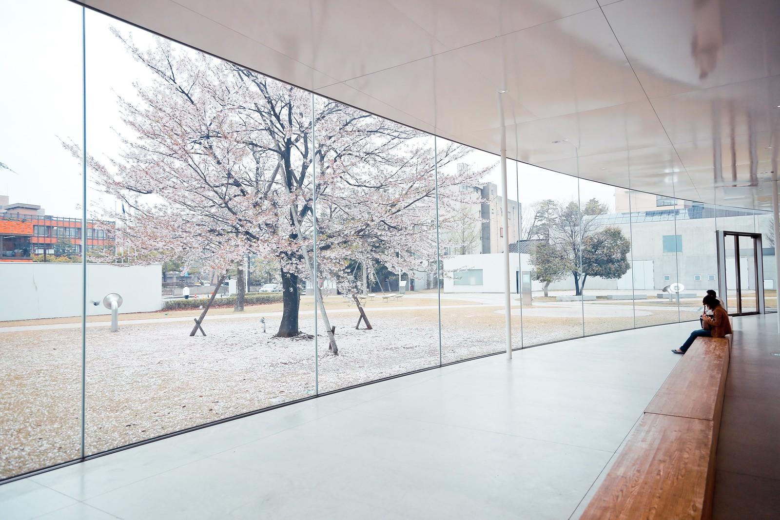 金沢21世紀美術館 (妹島和世 + 西澤立衛)