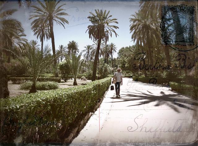 postcard (1910)  from Palermo, Villa Bonanno