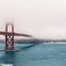 Foggy day at Golden Gate Bridge by Federico Donati