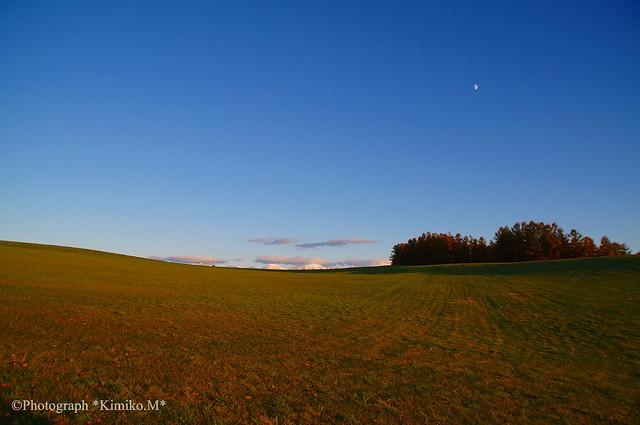 半月の丘1