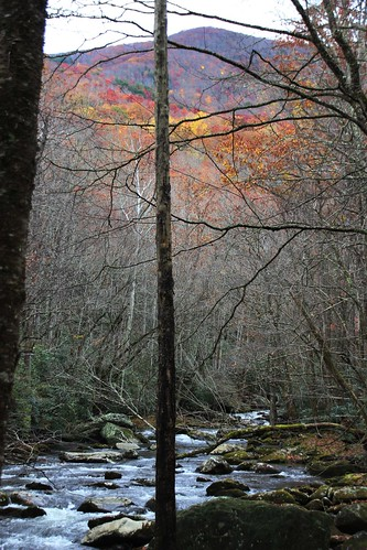 IMG_6642_Little_River_Trail