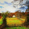 #baltimorephotographer #fallcolors driveby shooting - not #photojournalism, #reportage or #documentary #photography, just a #pretty #fall #landscape. #hashtagsoup