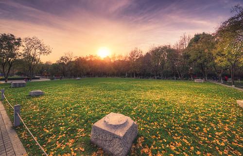 park city winter sunset sunlight tree leaves square landscape leaf twilight outdoor dusk nanjing hdr