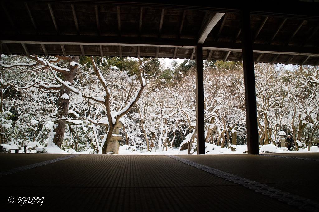 圓光寺の白銀の庭