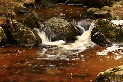Ruisseau du forez