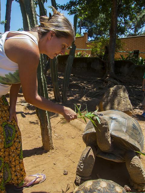 Madagascar9-144.jpg
