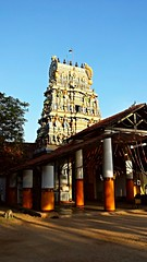 Sivan temple, Point Pedro